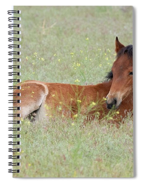 Foal In The Flowers Spiral Notebook