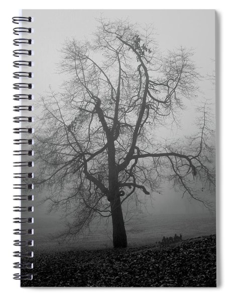 Foggy Tree In Black And White Spiral Notebook