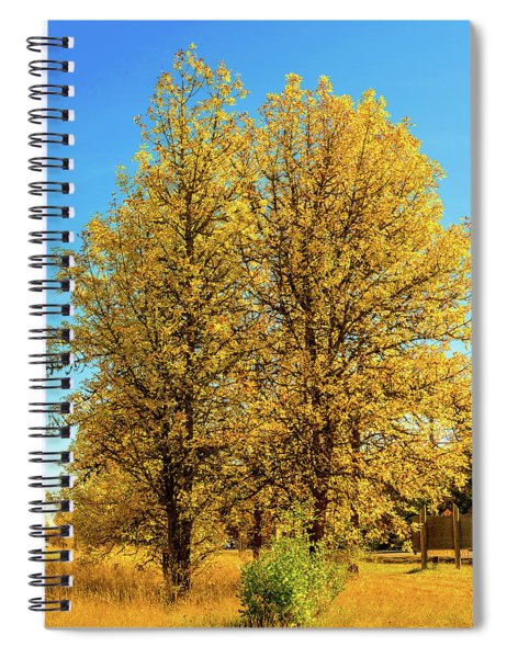 Foliage Spiral Notebook