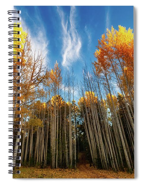 Follow The Yellow Leaf Road Spiral Notebook