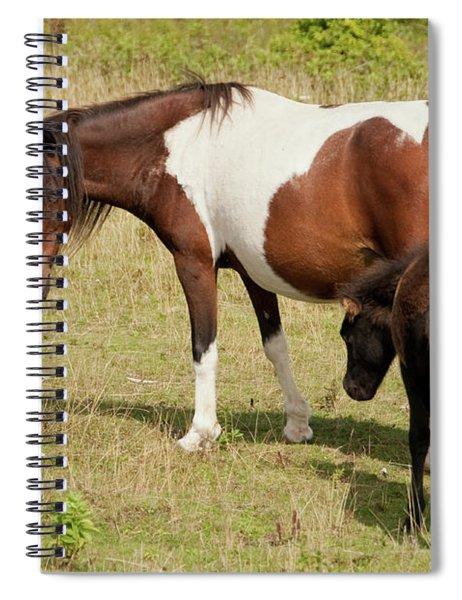 Following Spiral Notebook