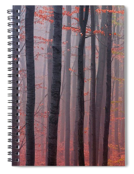 Forest Barcode Spiral Notebook