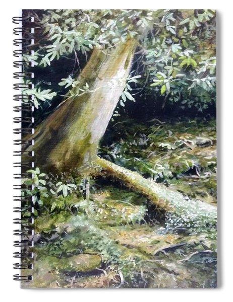 Forest Edge Spiral Notebook