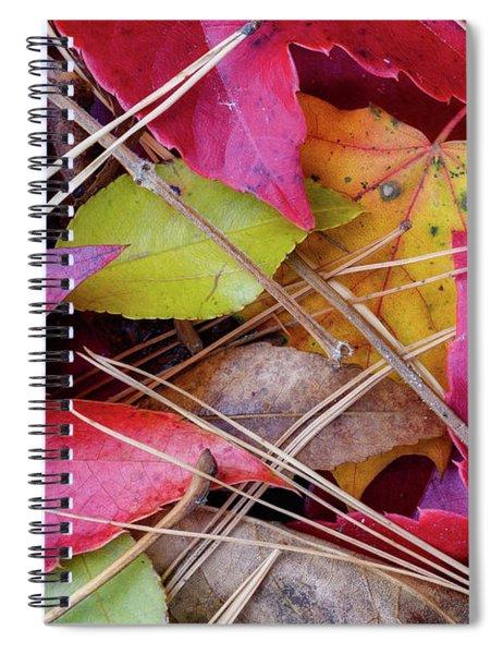 Forest Floor 1 Spiral Notebook