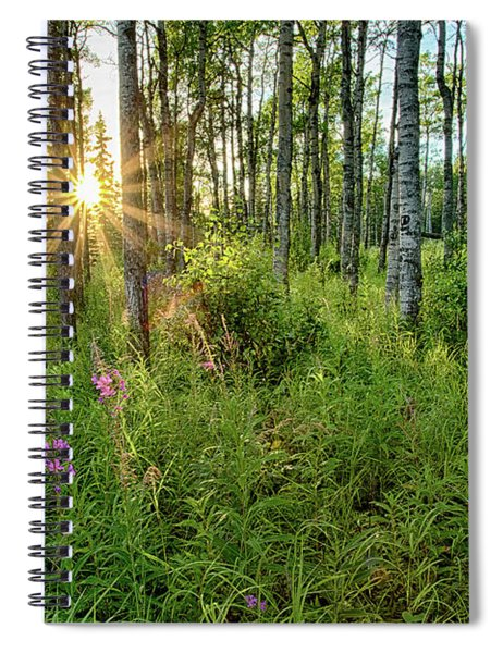 Forest Growth Alaska Spiral Notebook