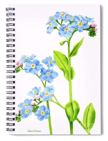 Forget-me-nots On White Spiral Notebook