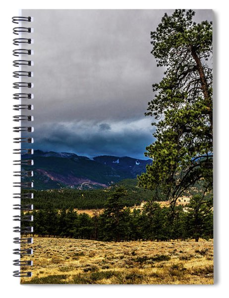 Forked Tree Spiral Notebook