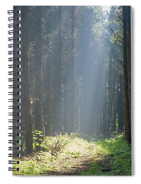 Spiral Notebook featuring the photograph Forrest And Sun by Anjo Ten Kate