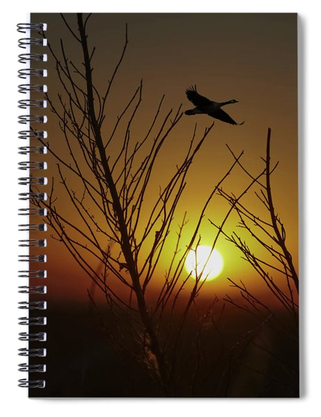 Fowl Morning Spiral Notebook