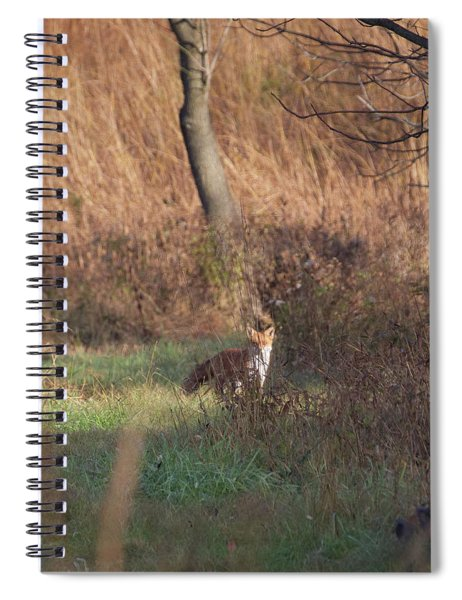 Fox On The Hunt Spiral Notebook