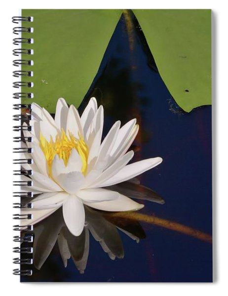 Fragrant Water Lily Spiral Notebook