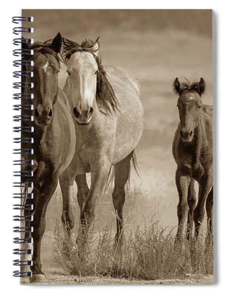 Free Family Spiral Notebook