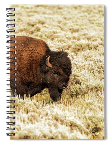 Roam Free Spiral Notebook