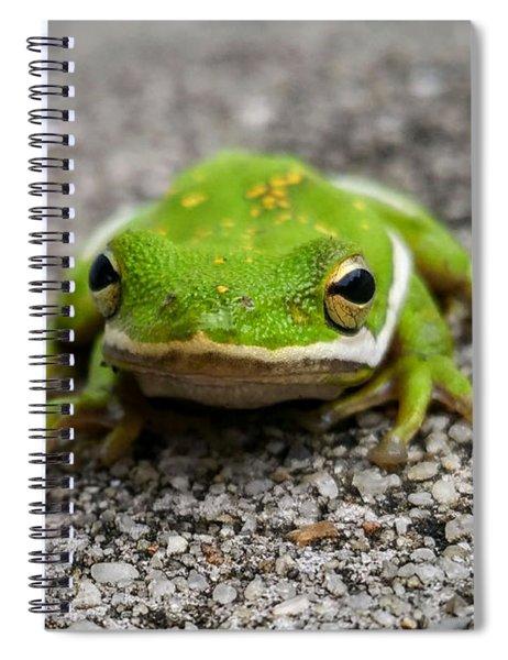 Frogger Spiral Notebook