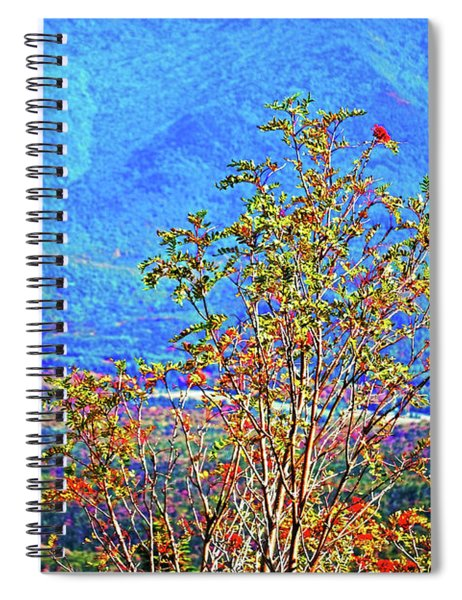Spiral Notebook featuring the photograph From Mount Washington by Patti Whitten