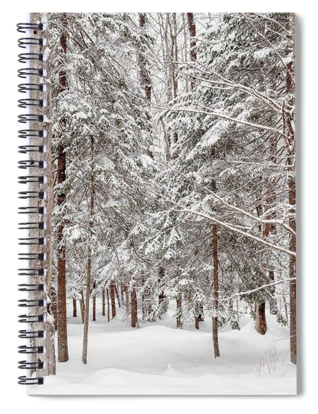 Spiral Notebook featuring the photograph Frosty Pines by Rod Best