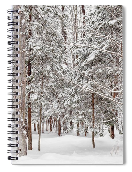Frosty Pines Spiral Notebook