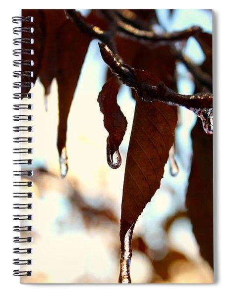 Frozen Autumn  Spiral Notebook