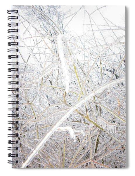 Frozen Spiral Notebook