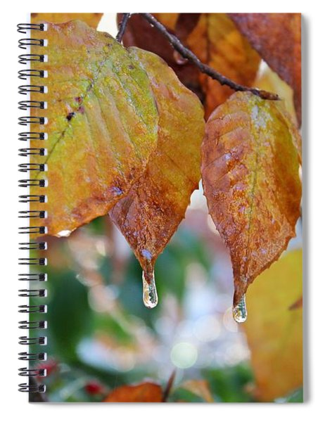 Icy Foliage Spiral Notebook