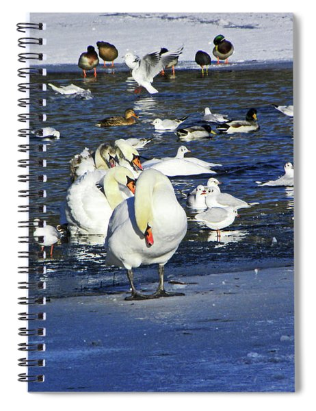 Frozen Lake. Spiral Notebook