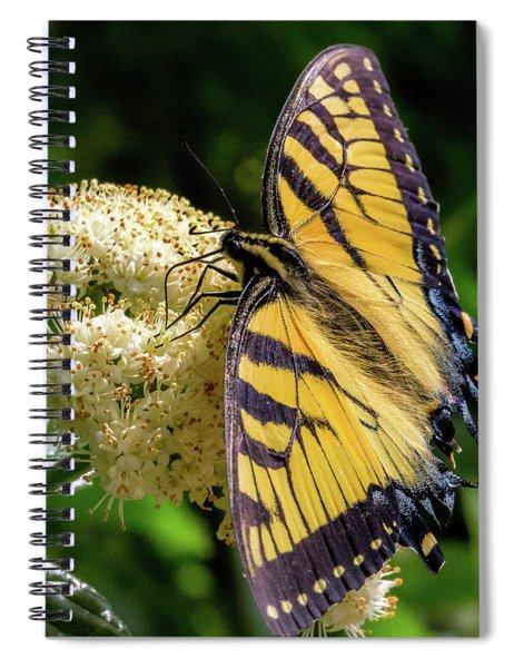 Fuzzy Butterfly Spiral Notebook