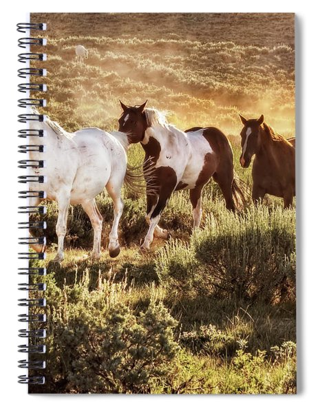 Galloping Down The Mountain Spiral Notebook