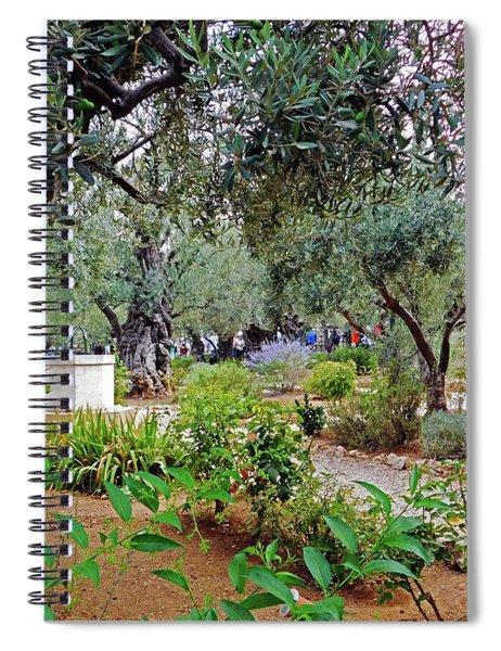 Garden Of Gethsemane Spiral Notebook