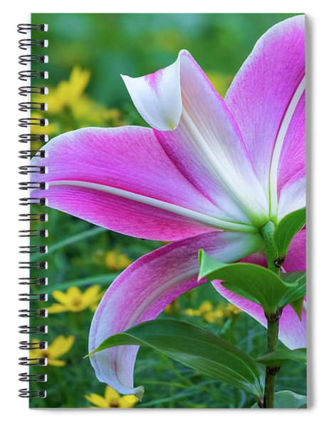Gazing The Stars And Moonbeams Spiral Notebook