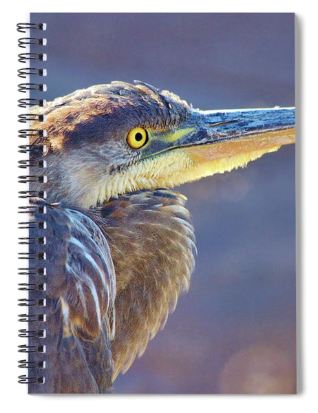 Gbh Waiting For Food Spiral Notebook