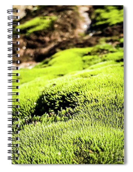 Spiral Notebook featuring the photograph Tiny Forest 1 by Atousa Raissyan