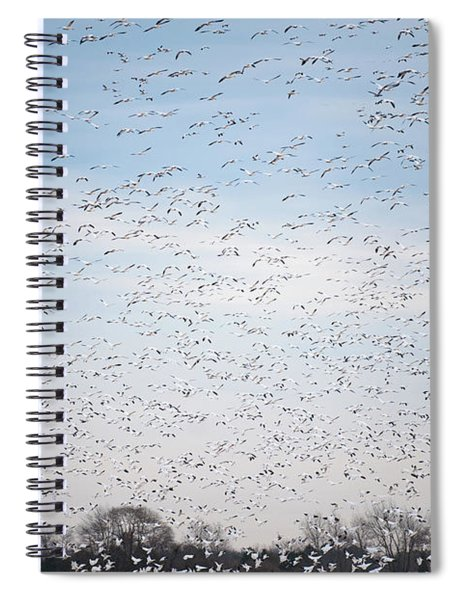 Geese In The Flyway Spiral Notebook