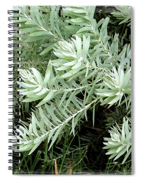 Gentle Leaves Spiral Notebook