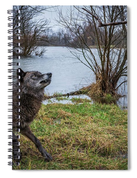 Get The Stick Spiral Notebook