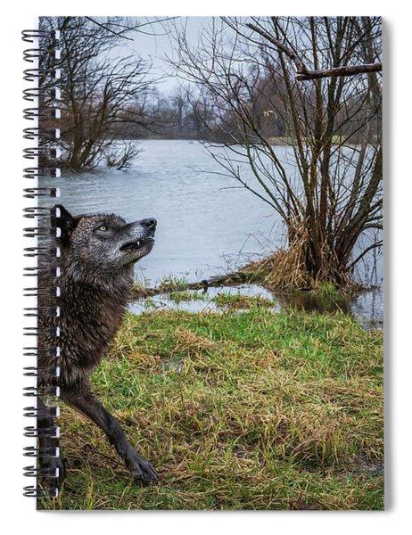 Get The Stick Spiral Notebook
