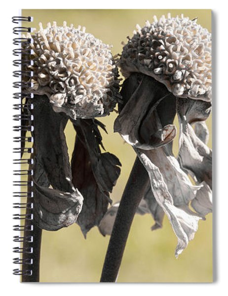 Ghost Sisters Spiral Notebook