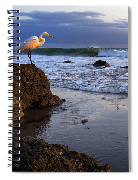 Giant Egret Spiral Notebook