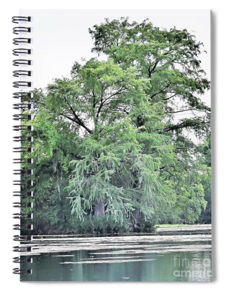 Giant River Tree Spiral Notebook