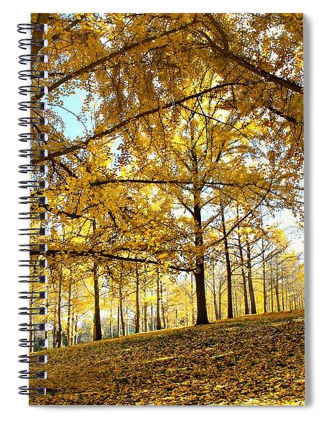 Ginkgo Grove Spiral Notebook
