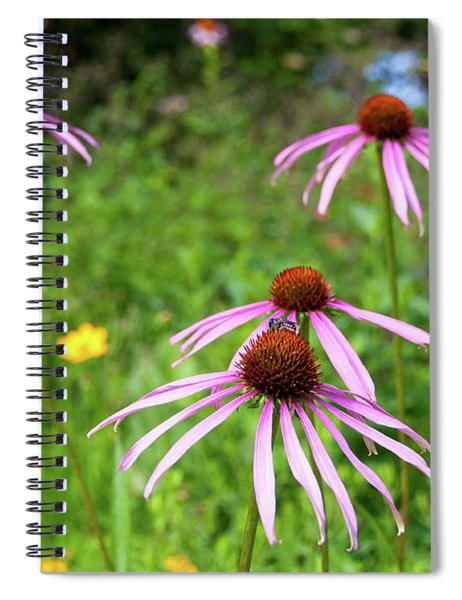 Glade Coneflower Spiral Notebook
