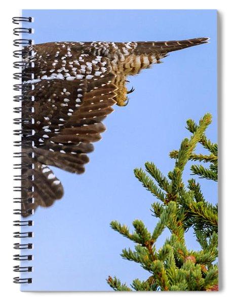 Glance Spiral Notebook