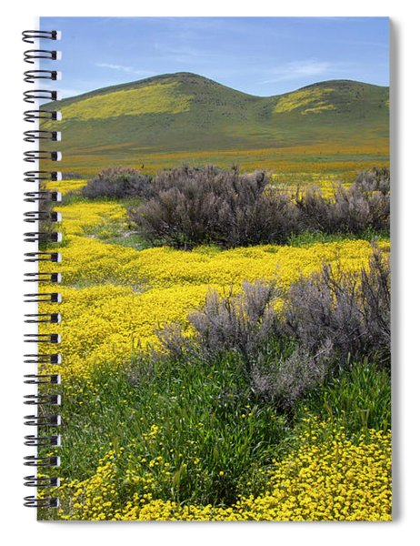 Glorious Color Spiral Notebook
