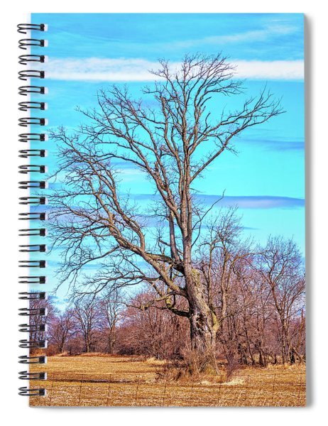 Gnarled Tree And Marbled Sky Spiral Notebook