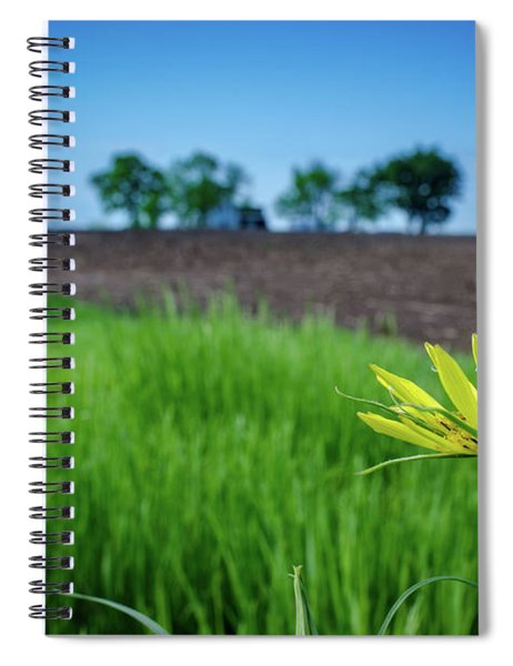Goat's Beard On Nelson Farm II Spiral Notebook