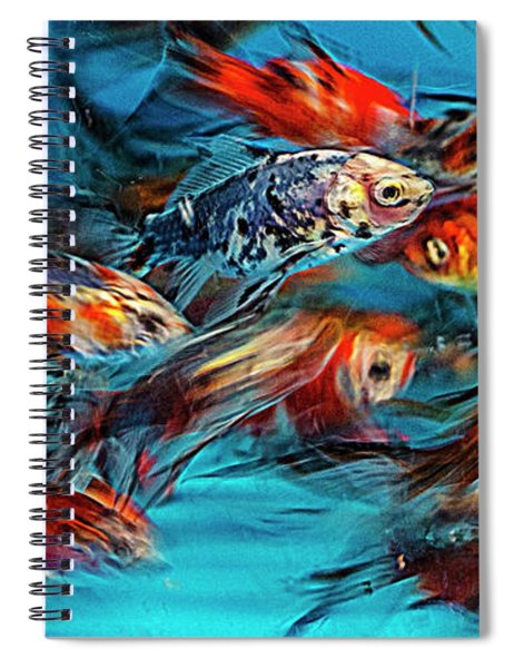 Gold Fish Abstract Spiral Notebook