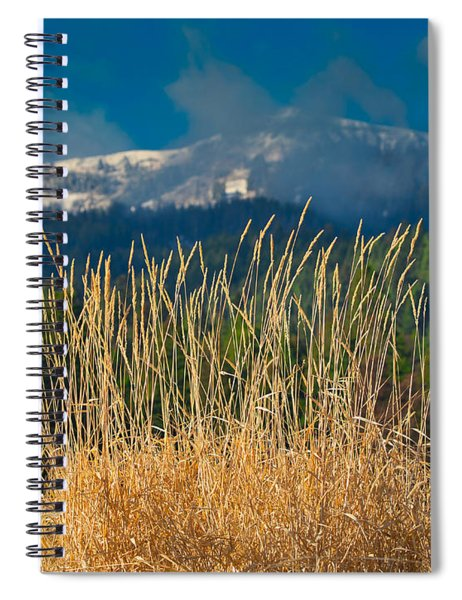 Gold Grass Snowy Peak Spiral Notebook