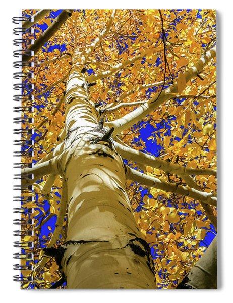 Golden Aspens In Grand Canyon Spiral Notebook