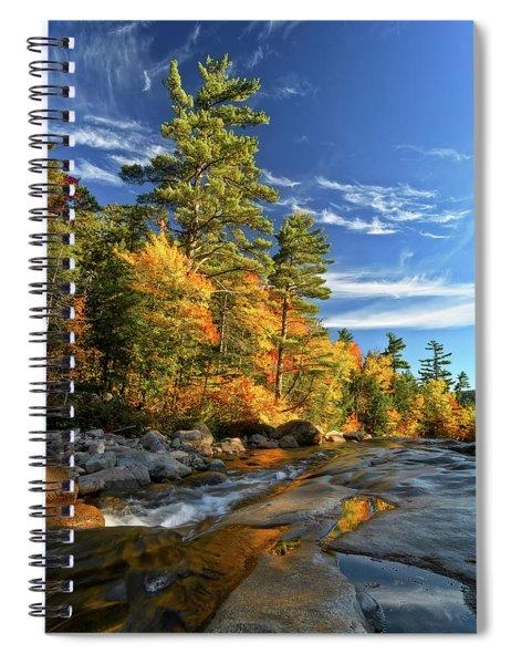 Golden Autumn Light Nh Spiral Notebook