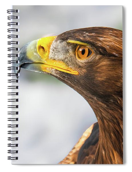 Golden Beauty Spiral Notebook