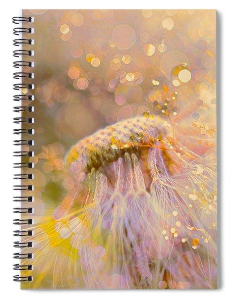 Golden Dandelion Spiral Notebook